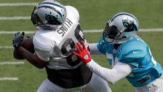Panthers Fan Fest 2013: Keeping an eye on the ball