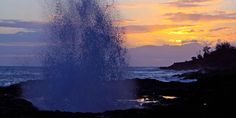 Beach House Restaurant :: Kauai Restaurant Fine Dining  5022 Lawai Road  Koloa, HI   (808) 742-1424