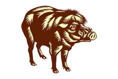 Philippine Warty Pig Woodcut. Illustration of the Philippine warty pig or Sus philippensis standing viewed from the side on isolated white background done in retro woodcut style.#Illustration #PhilippineWartyPig