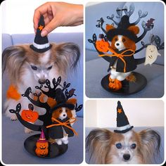 .@momos_gallery | Momo's Delivery Service Halloween Ver , Needle Felting