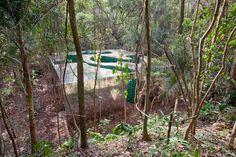 cristina iglesias: vegetation room inhotim: this must be one crazy experience!
