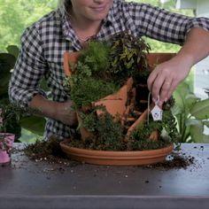 How to Make an Adorable Broken Pot Fairy Garden in 4 Easy Steps Transform a broken clay pot into som Broken Pot Garden, Fairy Garden Pots, Fairy Garden Houses, Gnome Garden, Fairies In The Garden, Large Fairy Garden, Moss Garden, Garden Crafts, Garden Projects