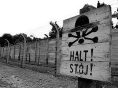 Sixty five years after Soviet troops liberated the German death camp in Auschwitz, Poland, European leaders will on Wednesday pay tribute to Jewish suffering during the Holocaust. Women In History, Family History, Find Your Ancestors, Scenic Design, Make Photo, Brick Wall, Genealogy, Wwii, Europe