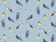 Birds & Confetti