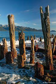 Incredible Pictures: Resurrection Bay - Seward, Alaska