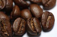 Veel koffie, lekker met verse bonen