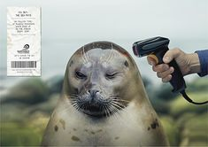 Surfrider You Buy The Sea Pays - barcode scanner with seal
