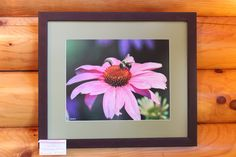 """Visitor"" by Owl's Eye Images, a  #Mauston photographer. 