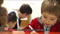 Cerveau: les découvertes de la neuropédagogie - France 2