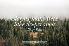 Let your roots run deep. #wmade