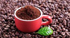 10 usos de los posos de café en el jardín
