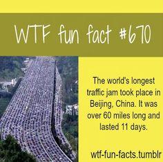 WTF Fun Facts About Love   Found on shopfella.com