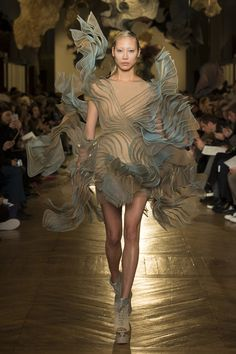 The complete Iris van Herpen Spring 2018 Couture fashion show now on Vogue Runway.
