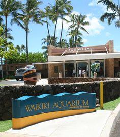 Waikiki Aquarium 2777 Kalakaua Ave  Honolulu, HI 96815