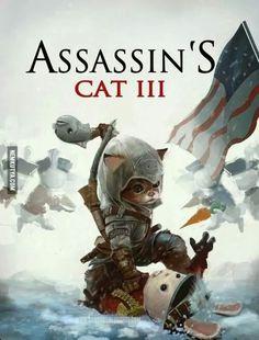 Assassin's Cat ;)