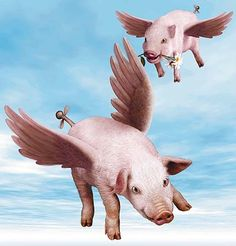 Happy Flying Pigs ! I want these on my kitchen wall :)