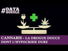 L'hypocrisie autour du cannabis en France résumée en vidéo