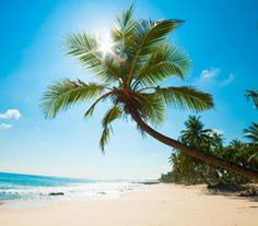 Sprawl under the sun at the white sandy beaches of Kenya with ticketsasa's affordable holiday packages. Check them out https://www.ticketsasa.com/holidays