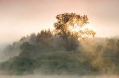 Одно из сильных впечатлений лета - сплав по реке Чусовая. Гребли почти пять дней, прошли 230 км (что немного для байдарки). Особенно, учиты...