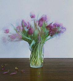 muse-ings: Michael Wesely - Still Lifes
