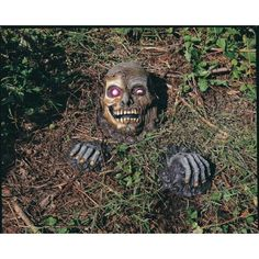 Rubies Costume Co Full Skull Outdoor Prop Multicoloured One Size ** Check out this great product.Note:It is affiliate link to Amazon.
