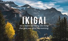 Ikigai: a reason for being; the thing that gets you up in the morning (noun).