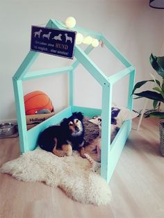 DIY dog house - not only for Tine Wittler's dog! DIY dog house - not only for Tine Wittler's dog! Cat Crate, Diy Dog Bed, Dog Furniture, Furniture Cleaning, Cheap Furniture, Dog Rooms, Unique Animals, Dog Houses, Dog Supplies