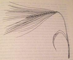 Getreideschule: Heute gibt's alles über die Gerste! Ein leider viel zu seltenes Getreide .... Eine ideales Mittagessen für Bürohengste