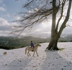 Winter Horseriding on Powerscourt Estate in Wicklow, Ireland. Beautiful Snow scene with the Sugarloaf Mountain in the background. www.powerscourt.ie