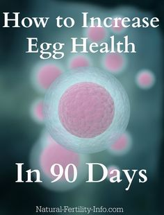 Check out our Step-By-Step Guide to Supporting Your Egg Health! #naturalfertility, #boostingegghealth, #ivfsupport, #ttc @hethirrodriguez