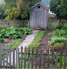 Reminds me so much of my sweet, sweet Grandma ! Quaint gardening shed right in the garden ! (That, or an out-house :P) Garden Fencing, Herb Garden, Garden Landscaping, Garden Tools, Garden Sheds, Fenced Garden, Garden Structures, Outdoor Structures, Outdoor Gardens