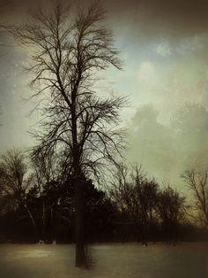 iPhoneography, Listen to Silence – Armin Mersmann