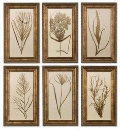 Wheat Grass Framed Art Set/6