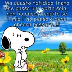 "Generalmente perchè si è perso ma non significa che non possa ripassare,caro Snoopy ""Cogli l'attimo"" ......................................Generally because it is lost but does not mean that it can not go over, dear Snoopy ""Seize the day"""