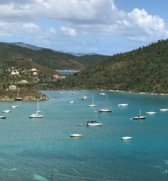 THRIFTY TO NIFTY IN THE CARIBBEAN - Thrifty to Nifty Category 5 Hurricane, Virgin Islands, Decorating On A Budget, Business Travel, Nifty, Caribbean, This Is Us, River, Beach