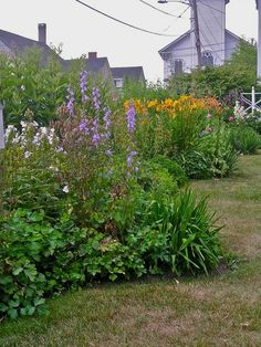 Cottage Gardens (New England)