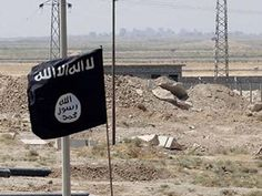 How to Fight the Islamic State by Joseph S. Nye - Project Syndicate