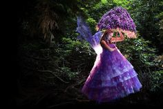 "The Story Behind ""Wonderland"" (14 photos) - My Modern Metropolis"