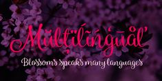 Blossoms Font: Blossoms is a fresh connected script family of four weights and a pack of Extras. It's packed with Contextual Alternates and Standard Lig. Blossoms, Graphic Art, Fonts, Illustration Art, Language, Neon Signs, Desktop, Designer Fonts, Flowers