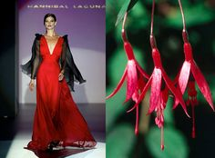 High Fashion Meets the Great Outdoors in Garden to Runway   HGTV Gardens