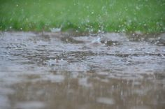 Dancing rain 4 By David Daugherty