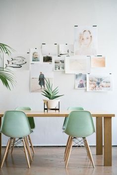 Dining chairs of Eames chairs in mint green