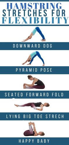 yoga stretches for flexibility,stretching exercises for beginners,workout flexib. Yoga Fitness, Senior Fitness, Health Fitness, Biceps, Flexibility Workout, Leg Flexibility Stretches, Hamstring Stretches, Stretches For Tight Hamstrings, Good Leg Stretches