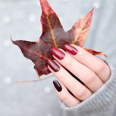 Nails 48 Must Try Fall Nail Designs And - Ongles 48 faut essayer les conceptions d& - Color For Nails, Fall Nail Colors, Shellac Nail Polish Colors, Shellac Nails Fall, Nagellack Design, October Nails, Uñas Fashion, Fashion Outfits, Fashion Trends