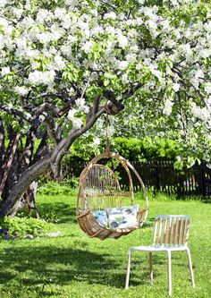 Kukkajuhla kruunaa kesän. Järjestä ikimuistoiset puutarhakekkerit kukkivien puiden alla. Katso Viherpihan vinkit.