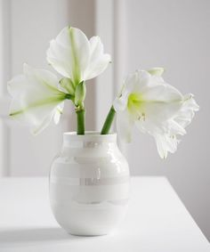 An iconic vase that has become popular in many homes worldwide.