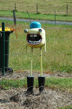 They are using this as a mailbox...i want it as a scarecrow.