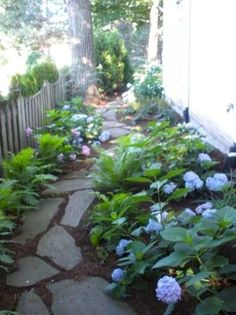35 Simple and Beautiful Front Yard Landscaping Ideas