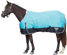 Saxon Turquoise/Black Plaid Turnout Winter Horse Blanket | AA Callisters