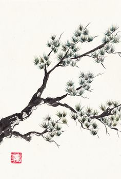 Watercolor Chinese Brush Painting of Pine Branch